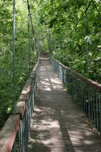 Swinging bridge near Ramsey Falls