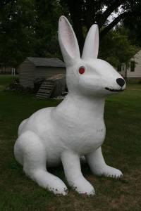Wabasso's white rabbit