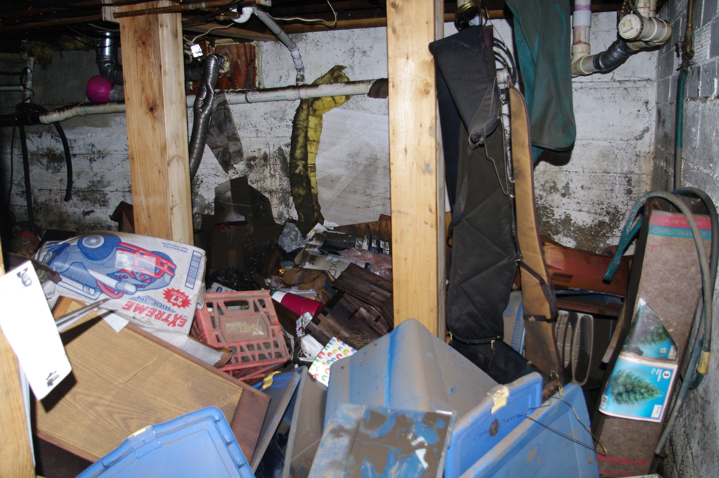 floodwaters destroyed everything in the basement of the house where