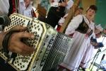 Fest, concertina