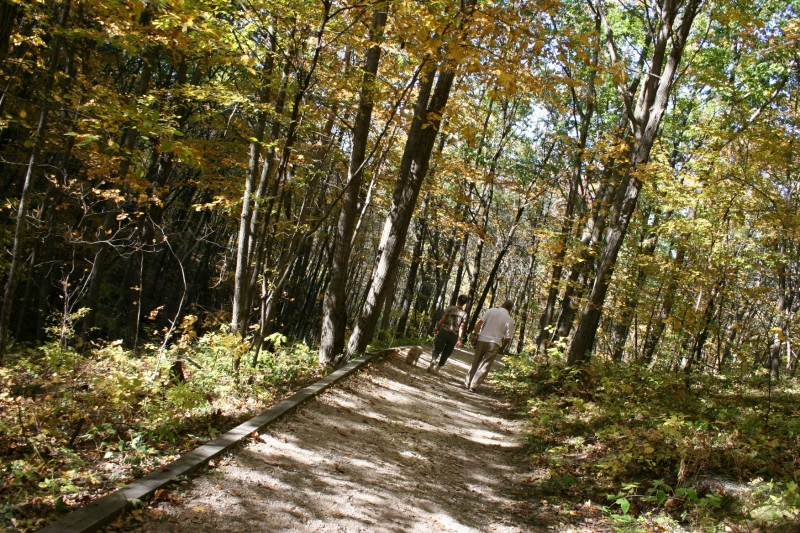 Well-kept and well-traveled paths take hikers deep into the Big Woods.