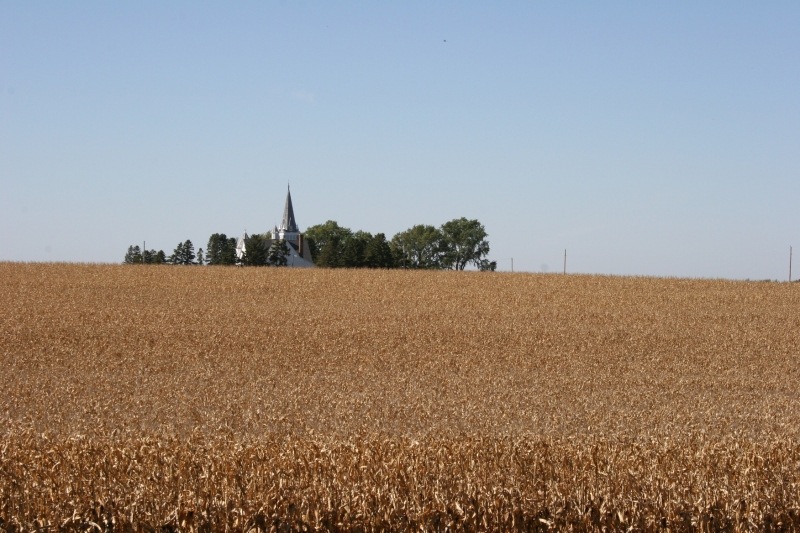I photographed Vang Lutheran Church across the cornfield west of the Potpourri Mill Log Cabin 10 minutes north of Kenyon.