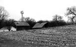 Drive, farm site