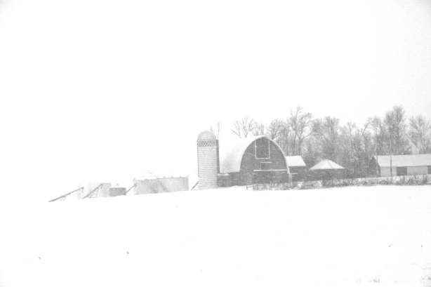 A farm site along Minnesota State Highway 67 between Vesta and Echo on Sunday morning.