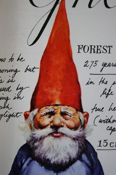 Image result for a book of gnomes