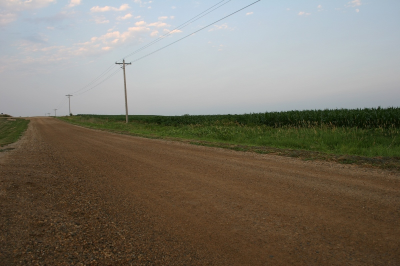 A gravel road just north of Lamberton in southwestern Minnesota.