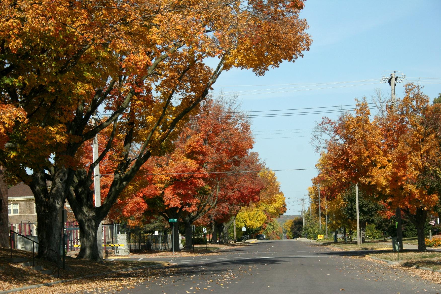 fall street