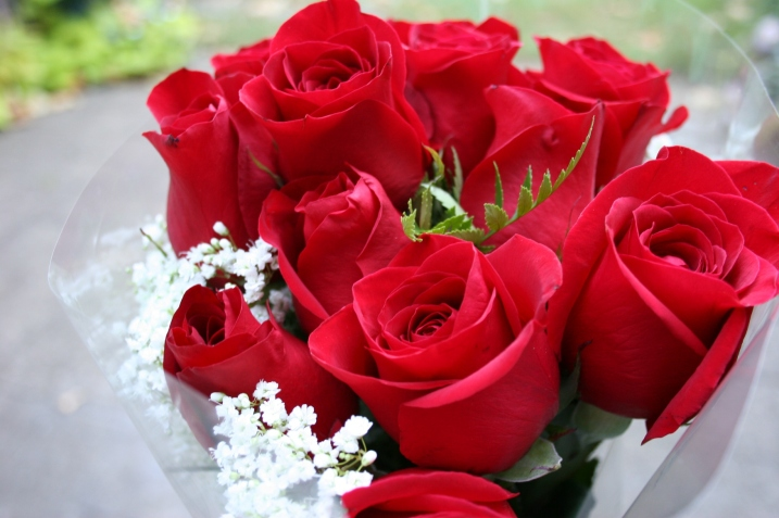 red roses from randy?w717&amph477 - Happy Birthday Dear H.W sis