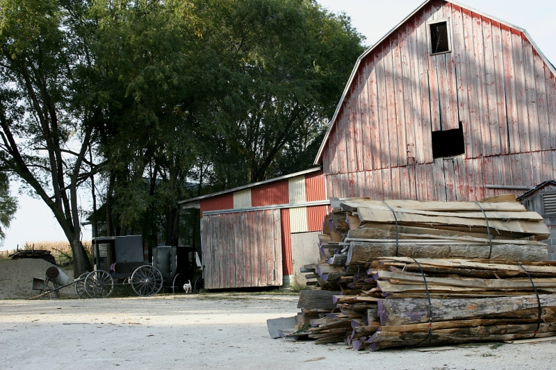 My final shot on the Hershberger farm: the barn, the buggies, the stack of wood.