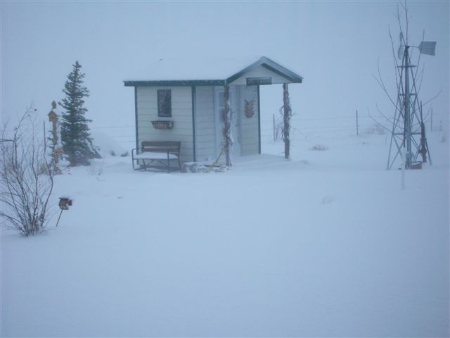 In the blowing snow, the fenceline is barely visible beyond the garden shed in my brother's yard.