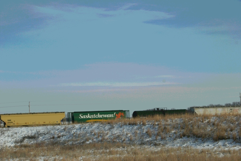South and west of Waseca, along U.S. Highway 14, a train cuts across the flat farm land.