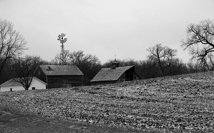 To the east, also en route to my hometown, I photographed this rural scene just west of Waterville along Minnesota Highway 60.