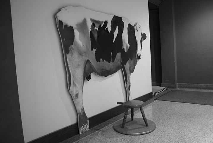 Would any Wisconsin museum exhibit be complete without a cow? Here you can perch on the stool and pretend to milk this Holstein.