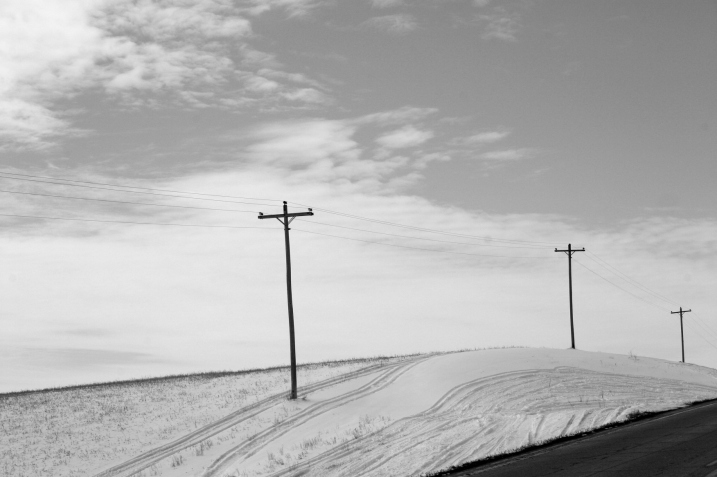 Utility poles break the horizontal landscape along Minnesota 21.
