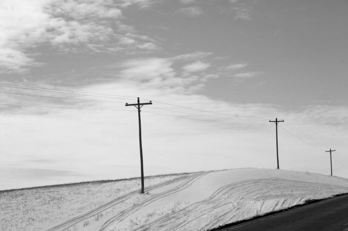Utility poles break the horizontal landscape along Minnesota 21.