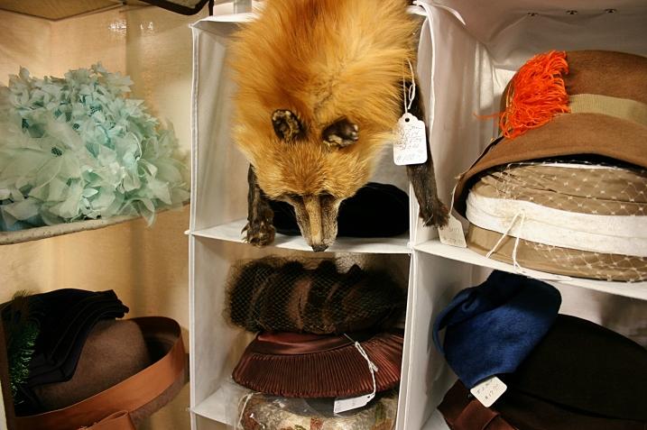 I was a little freaked when I encountered this fur among the vintage hats.