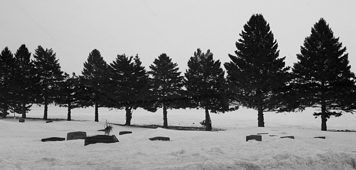 Some of the gravestones are barely peeking out of the snow.
