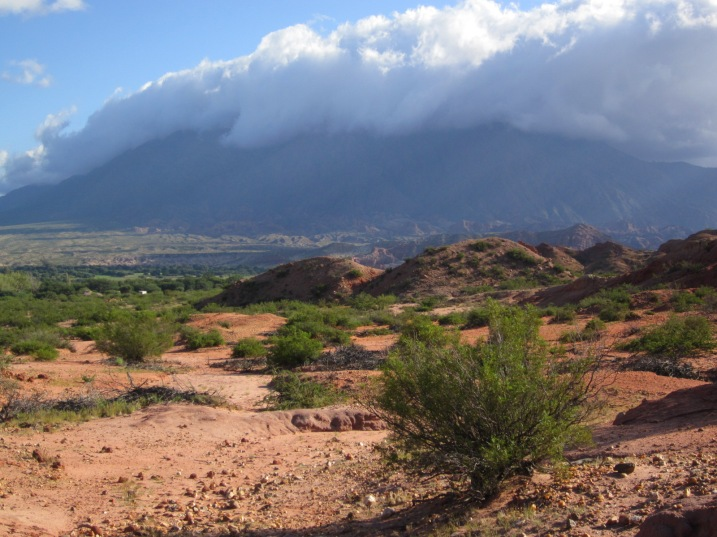 Valles Calchaquies near Cafayate, Salta province.