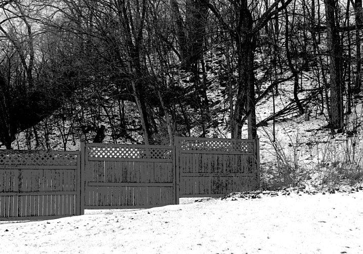 I awoke this morning to snow covering the landscape, as shown in this scene of my backyard and the woods adjoining it.