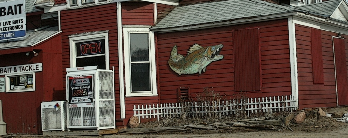 Oh, how I love that kitschy fish.
