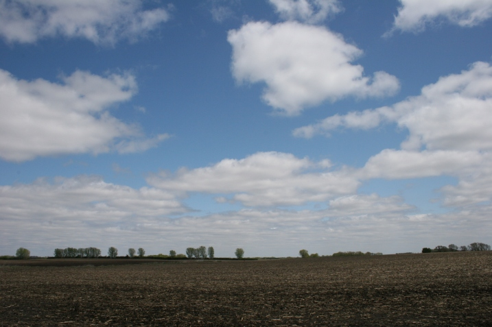 A snippet of the land my father farmed, my middle brother after him. The land and farm site are now rented out.