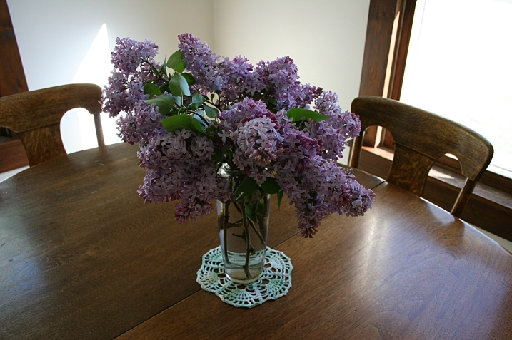 Lilac, on table 1 - Copy