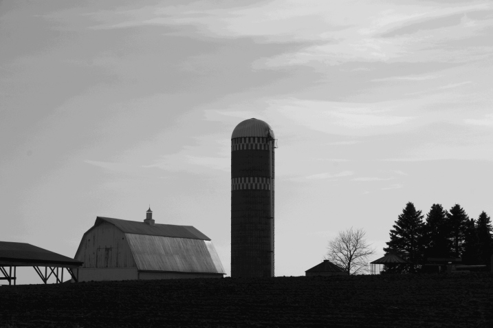 Rural scenes, barn and silo