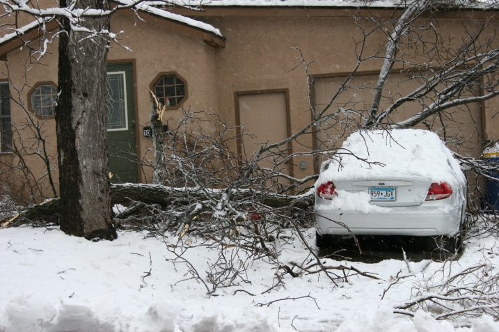 Branches are down all over, including at my new neighbor's house across the street.