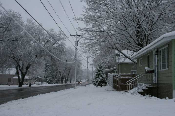 Willow Street, shortly after 7 a.m. May 2. That's my house on the right.