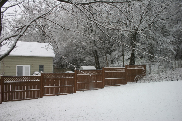 When I showed you my backyard a few days ago, it was snow-free. Not so this evening.