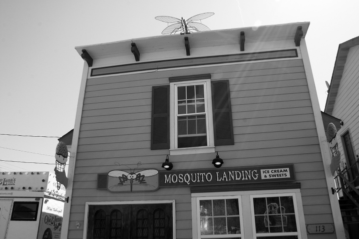 I just had to appreciate the name of this ice cream shop in Rothsay, with a mosquito atop the roof.