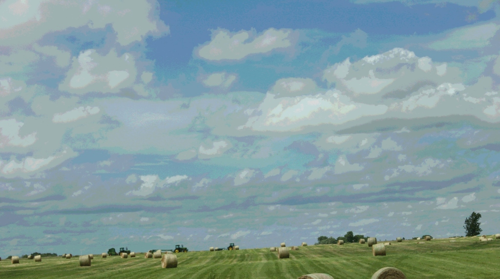 Making hay, along old U.S. Highway 14 west of Owatonna.