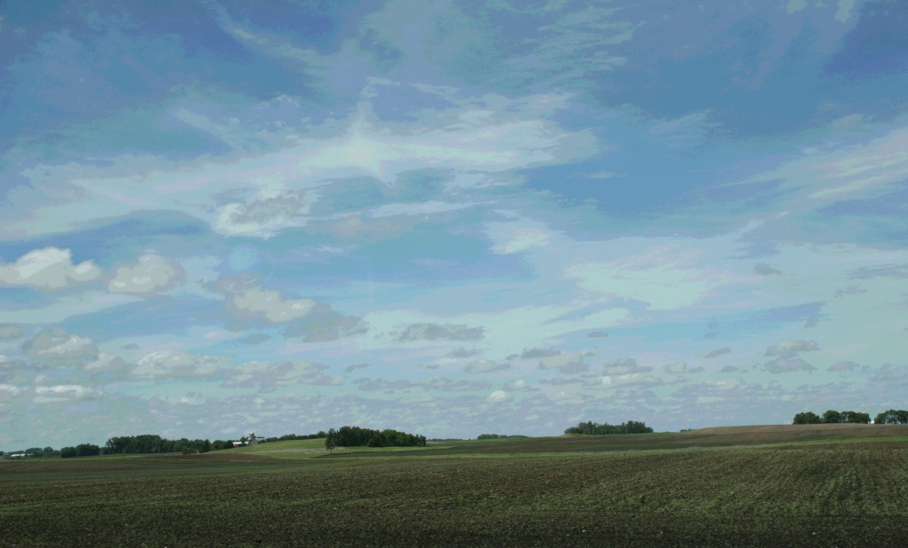 Checking out the crops near Moland Lutheran Church in Steele County, Minnesota.