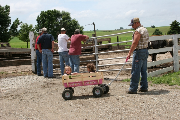 Fence leaning and wagon towing.
