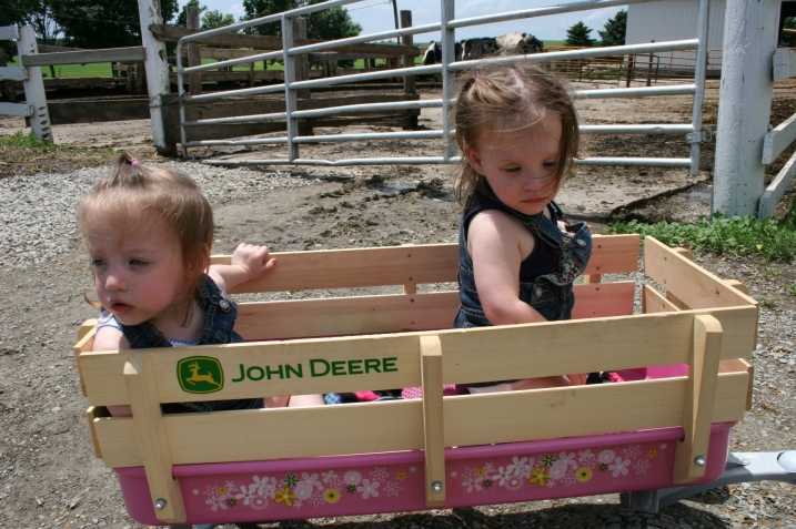 Twins Kelly and Emily, almost two, visit the farm with their dad.