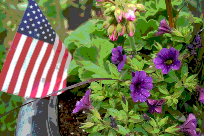 An American flag complements million bells and a geranium in a pot near my front door.
