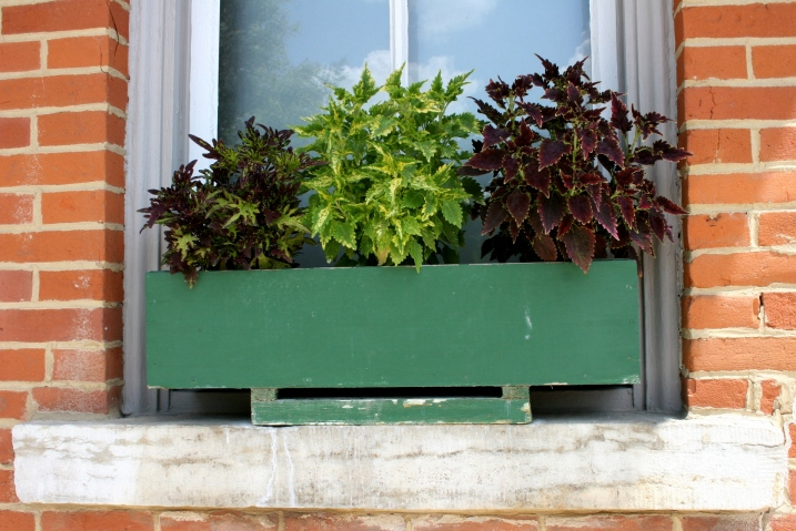 It's the details that count, that show a community truly cares like vibrant plants in windowboxes.