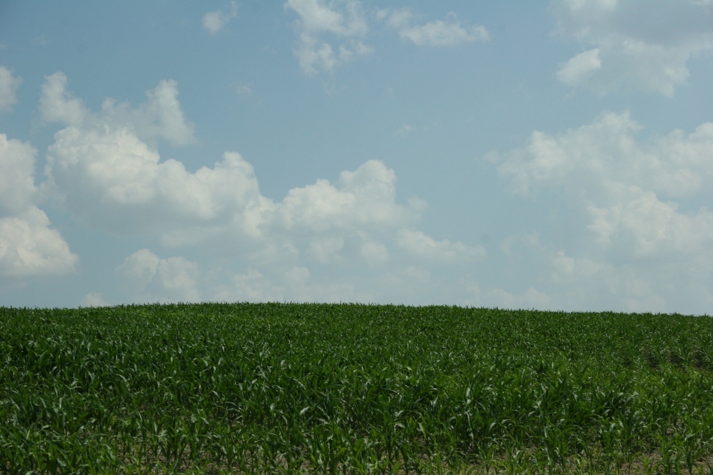 North Morristown is set in the middle of farm fields.