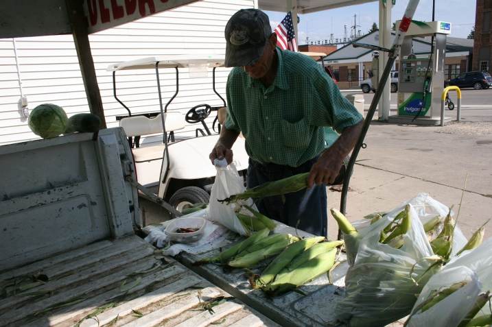 Bagging our sweetcorn late Sunday afternoon.