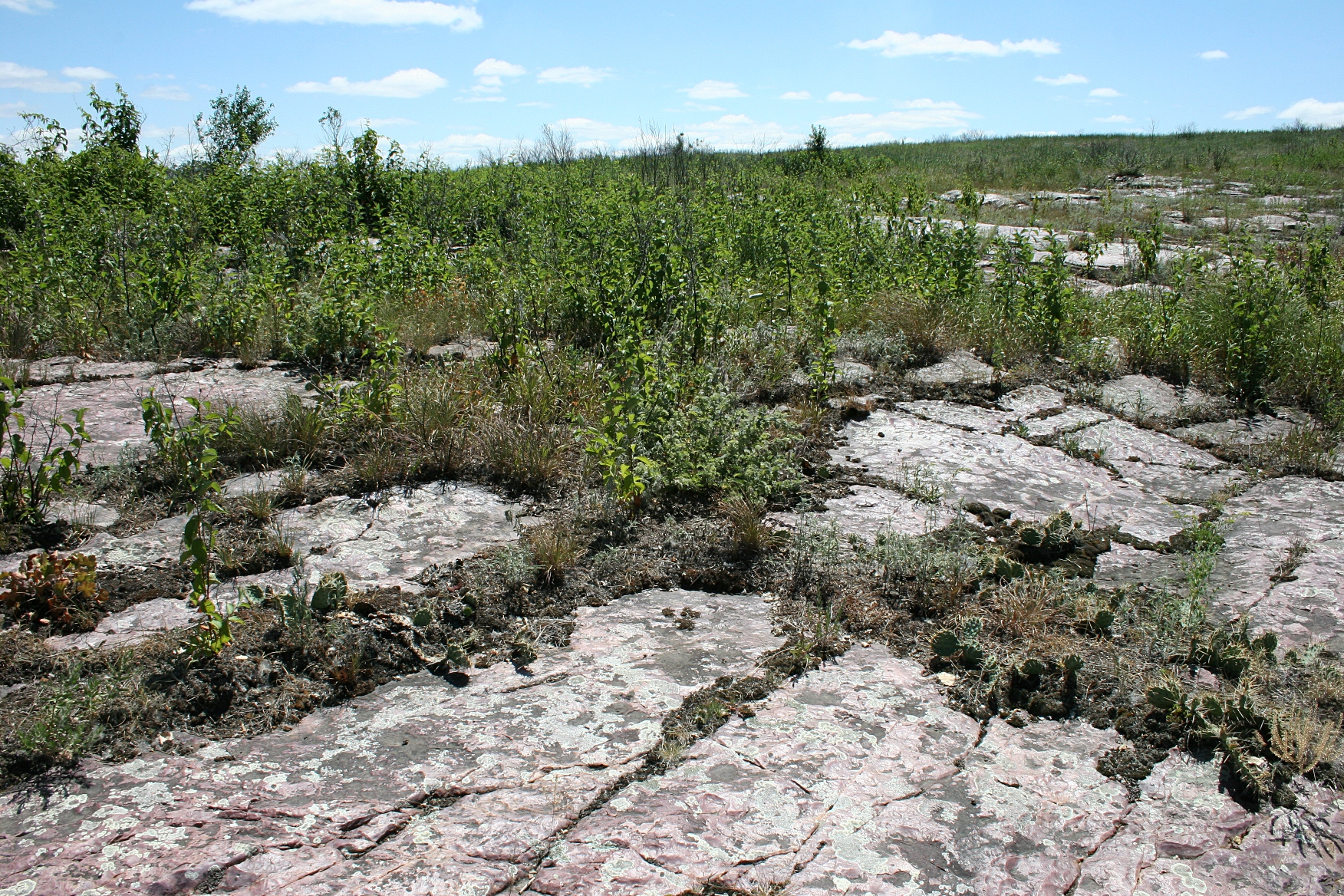 Mounds of flat rock naturally planted upon the prairie