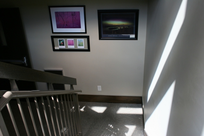 Light plays upon walls, floors and Brandenburg photos in a stairway display.