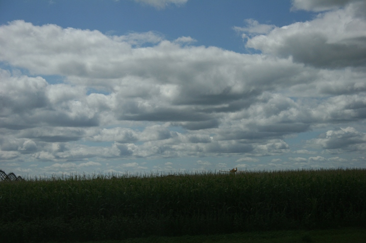 Frame 8: Just the tip of the plane visible above the cornfield.