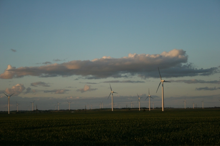 Hundreds of windmills now define this region of southwestern Minnesota.