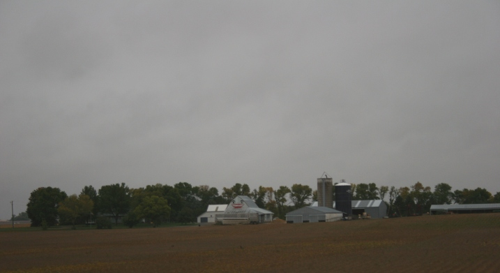 A cheery smile on a barn off U.S. Highway 14 serves as a backdrop to a ripened soybean field on a grey Saturday morning.