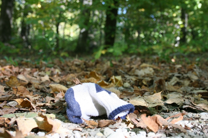 A baby's sock lost along a path at Nerstrand Big Woods State Park in rural rice County Minnesota.