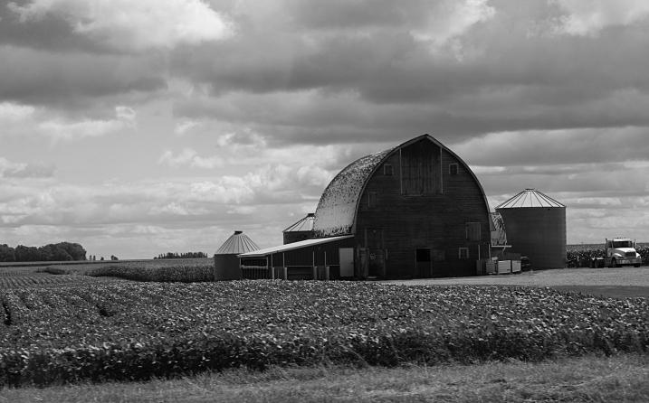 Rural, barn and bins