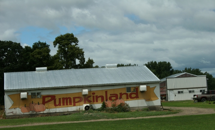 Pumpkinland near Vernon Center.