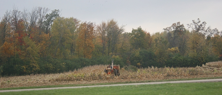 Back in the day, picking corn