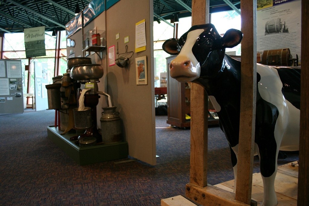 A portion of the expansive exhibit on Steele County's dairy industry.