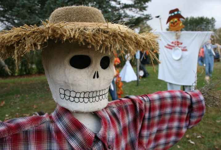 Some of the scarecrows can be a little frightening.